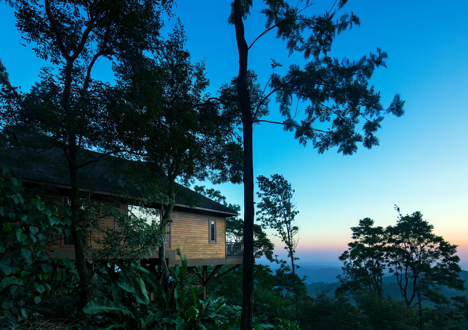 tree-height-cottage-with-nature-view